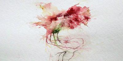 Image de présentation de Muriel Zeender